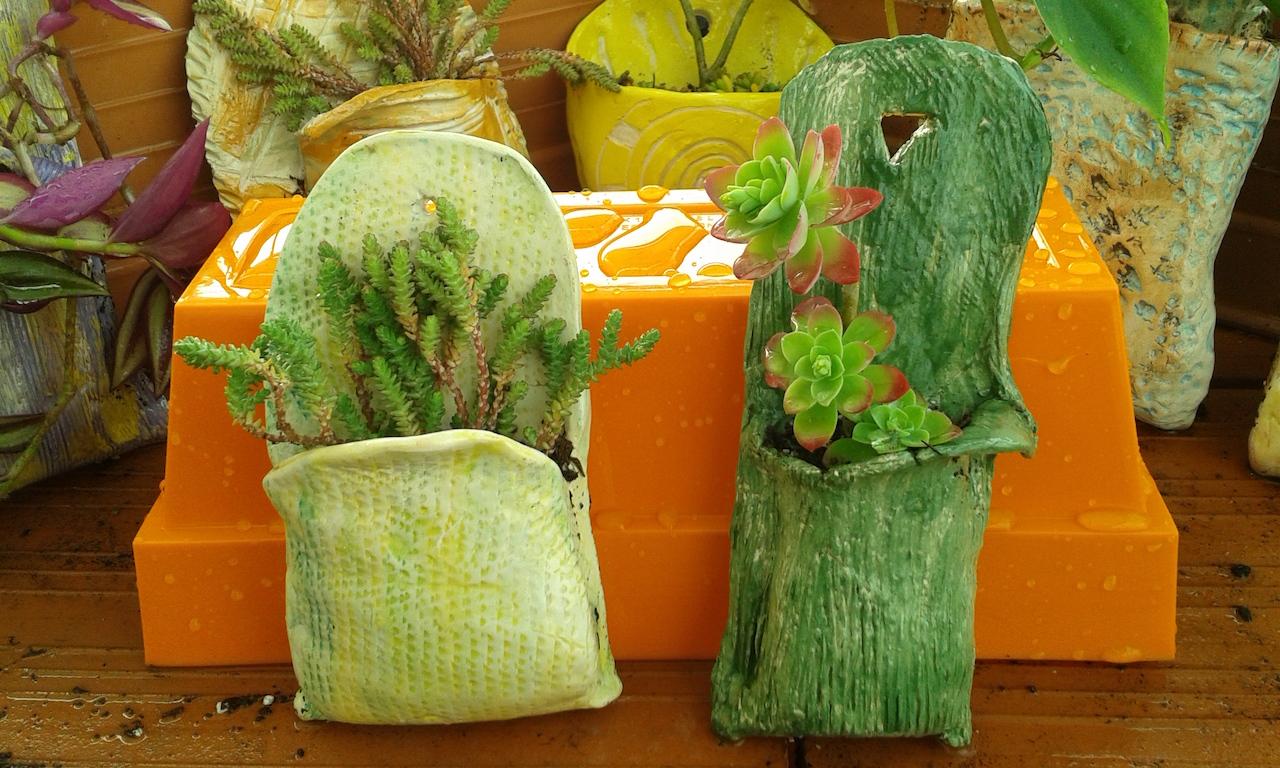 Fundación Aprocor venta de plantas